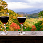 North Carolina Wineries & Vineyards
