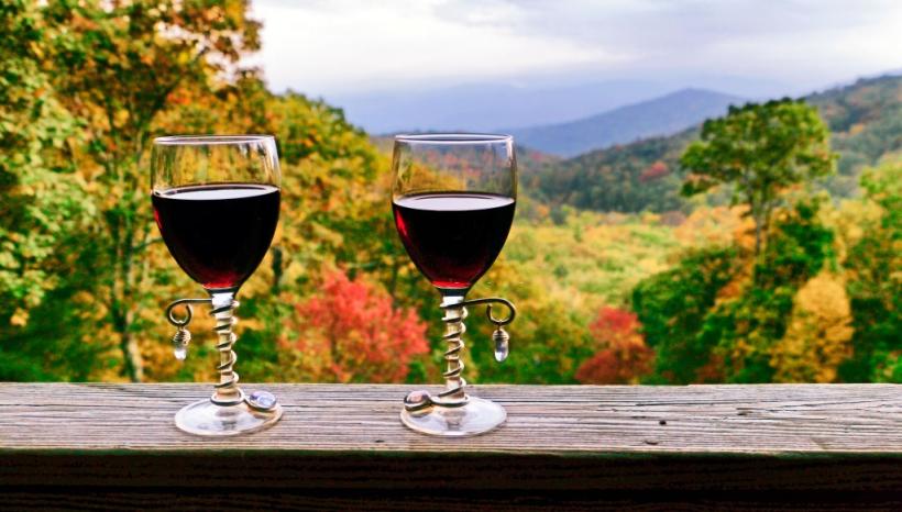 North Carolina Wineries & Vineyards